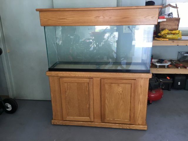 55 Gallon Aquarium With Nice Oak Stand And Canopy For Sale Capital Cichlid Association
